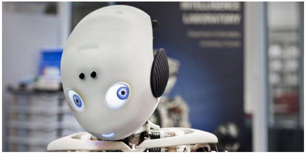 Video: Meet Roboy, the Robot