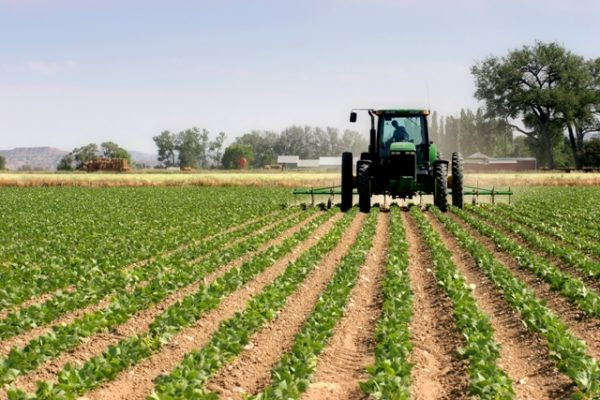 PWC: Technology innovation, 'catalyst to boost Africa's agriculture production'