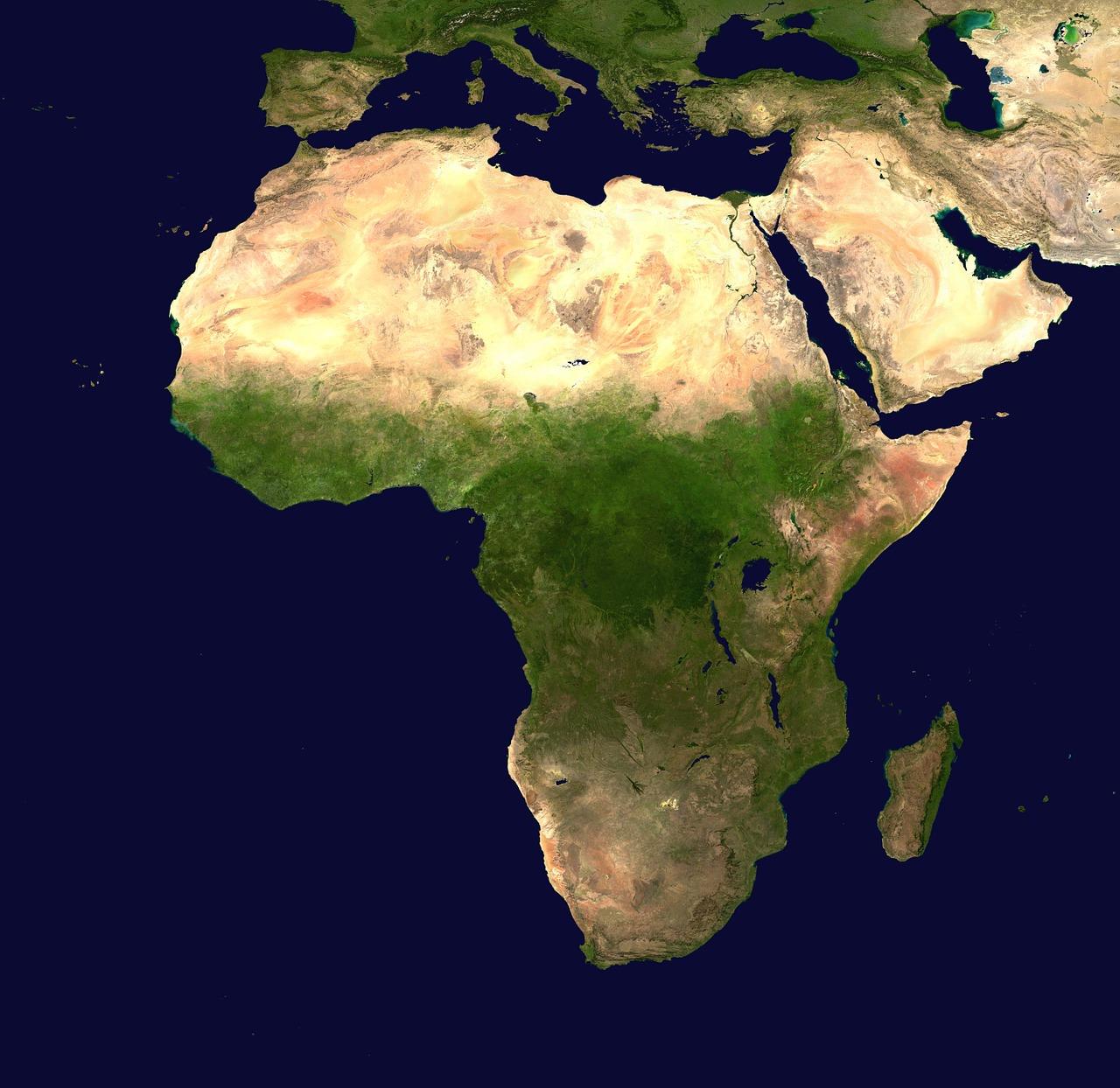 Gorilla eyes $5.6tr stakes in African expansion plan